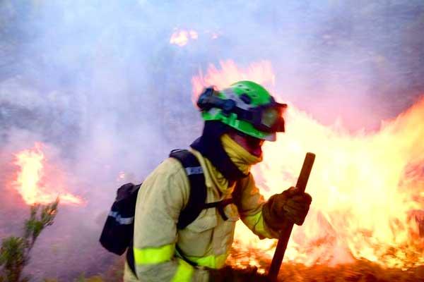 Incendio en Sierra Bermeja (Málaga): ¡Las políticas capitalistas queman nuestros montes!